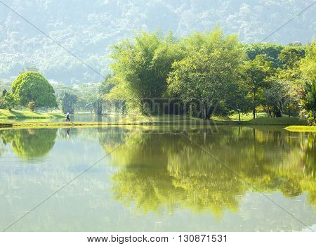 Reflection of Lake garden at Taiping Malaysia