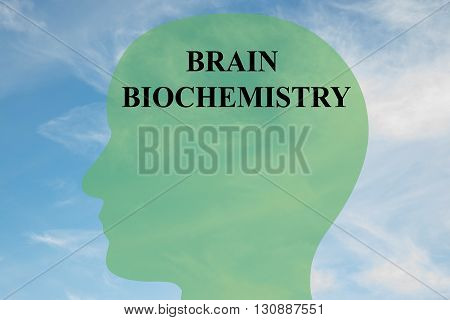 """Render illustration of """"BRAIN BIOCHEMISTRY"""" script on head silhouette with cloudy sky as a background. Human brain concept. poster"""