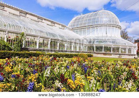 Palm House in Belfast. Belfast Northern Ireland United Kingdom.
