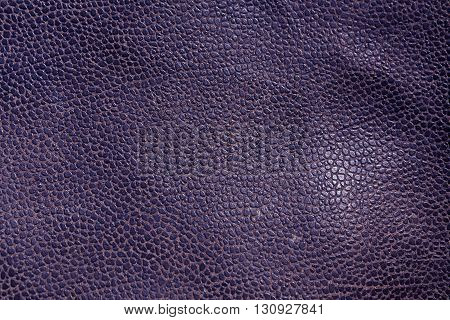 Abstract Blue Leather Texture.