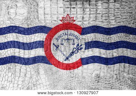Flag Of Cincinnati, Ohio, On A Luxurious, Fashionable Canvas