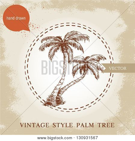 Hand drawn coco palm trees sketch illustration on vintage grunge background. Travel and vacation symbol.