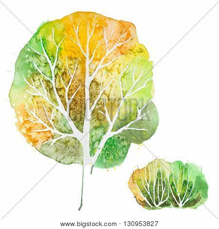 Big hand drawn watercolor green orange autumn tree and shrub, isolated on the white background
