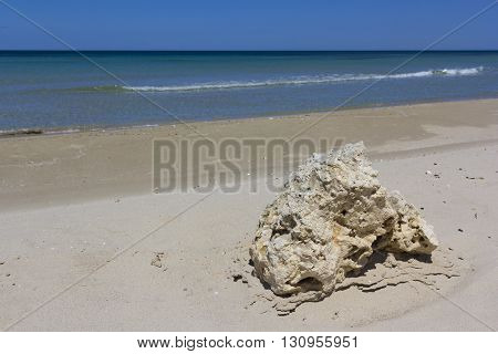 Sand beach of Salento, rock on foreshore