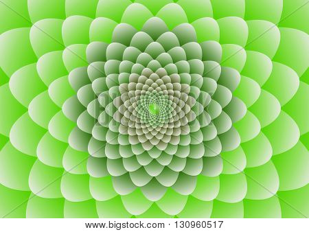 Green and white flower Background Vector Illustration design.