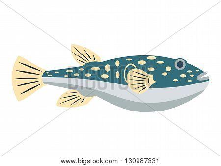 Fugu fish vector illustration. Fugu fish isolated on white background
