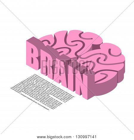Brain Structure Of Infographics. Brains Headache Human Cortex