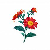 Treasure Flower Hand Drawn Realistic  Flat Vector Illustration In Artistic Painting Style On White Background poster