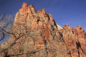 Red Rock Cliff Court of Patriarchs Zion Canyon National Park Utah Southwest poster