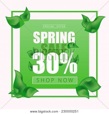 Advertisement About The Spring Sale On Background With Leaves. Vector Illustration - Green