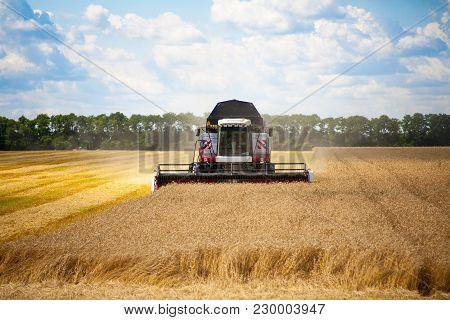 Combine Machine Is Harvesting Oats On Farm Field