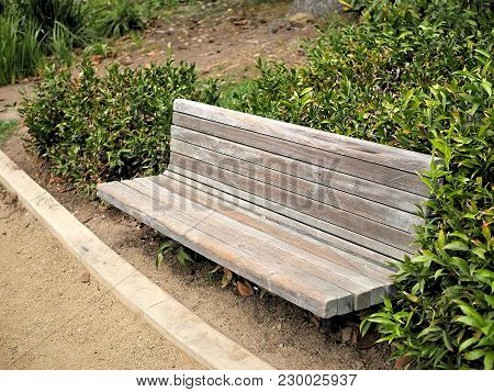 Park Bench In A Santa Barbara, California Botanical Garden With Paths And Plants.