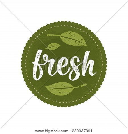 Fresh Calligraphic Handwriting Lettering And Leaf. Vector White Vintage Illustration Isolated On Dar