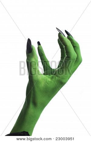 A witch's hand.