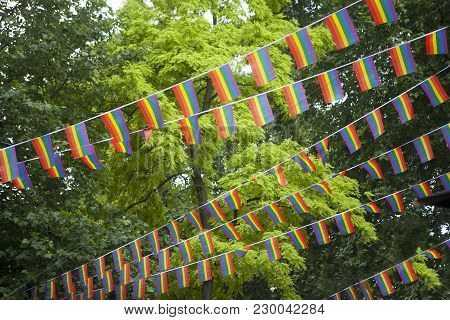 Rainbow Flags In The Garden During The Gay Pride
