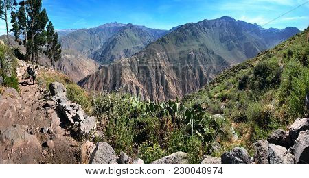 The Colca Canyon Near Cabanaconde, Arequipa Department In Southern Peru