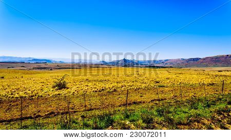 Landscape With The Fertile Farmlands Along Highway R26, In The Free State Province Of South Africa,