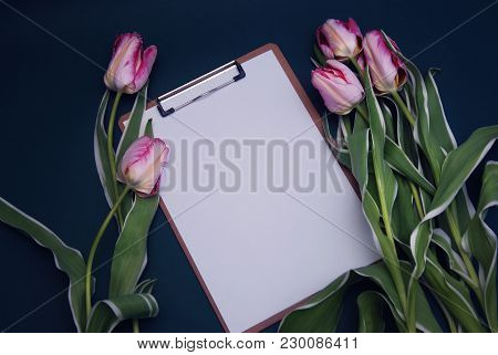 Tulip Pink Flower Bouquet And Blank White Paper Card On Adark Blue Background With Copy Space.