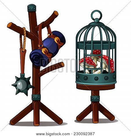 Mushrooms In A Cage For The Birds And The Mace On The Rack. Vector.