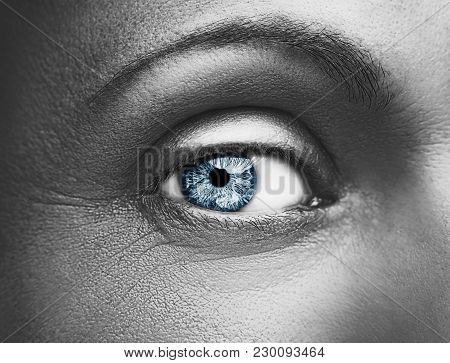 Glamour Shiny Metallic Professional Makeup. Beautiful Eye Close Up.