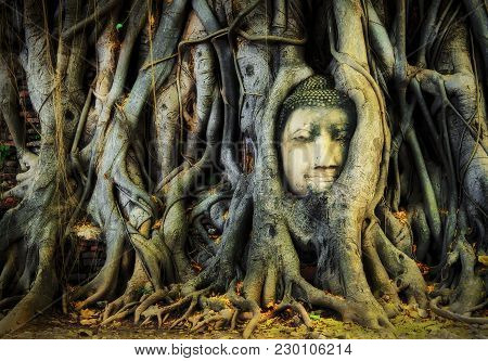Head Of Buddha In The Tree Roots At Wat Mahathat Ayuthaya,thailand.