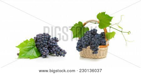 Bunch Of Ripe Grapes With Leaves In A Wicker Basket Isolated On White Background. Horizontal Photo.