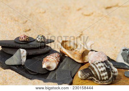 Beach Theme Of Stones And Seashells