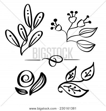 Set Hand Drawn Wild Flowers Branch Vector Drawing And Sketch With Line-art On White Backgrounds, For