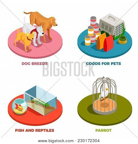 Pet Shop 2x2 Design Concept With Dog Breeds Goods For Pet Parrot Fish And Reptiles Isometric Icons V