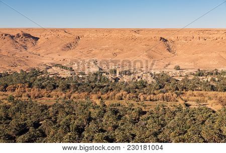 Wide Angle Of Cultivated Fields, Palm Grove And Desert In Morocco