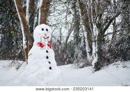 Big Snowman Built In Garden Covered In Snow.