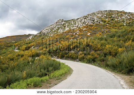 beautiful country road