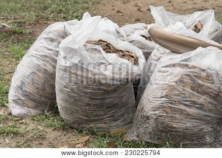Autumn Cleaning Leaves,pile Of Full White Garbage Bags On The Grass In The Park,leaves In Bag Garbag