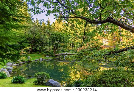 Lake With An Ornate Wooden Bridge, Trees And A Veranda Roof In A Park With Green Grass And Fern Bush