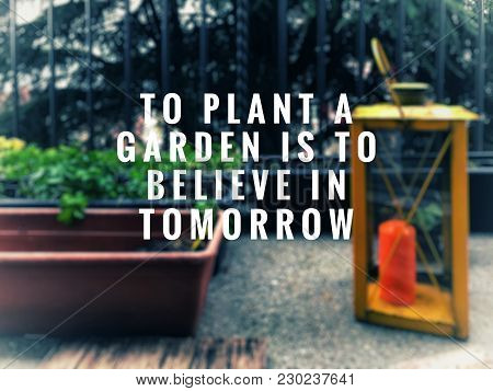 Motivational And Inspirational Quotes Quotes - To Plant A Garden Is To Believe In Tomorrow. With Blu