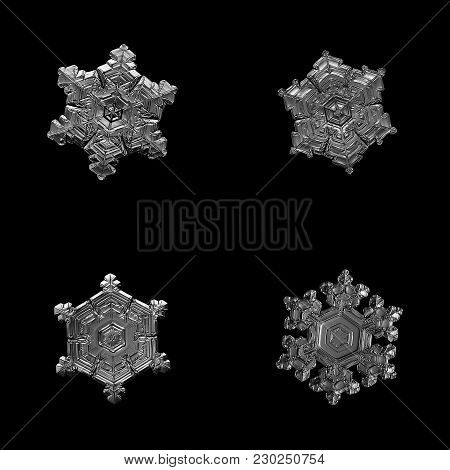 Four Snowflakes Isolated On Black Background. Macro Photo Of Real Snow Crystals: Small Star Plates W