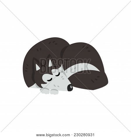 Siberian Husky Dog Character, Purebred Dog Character Vector Illustrations Isolated On A White Backgr