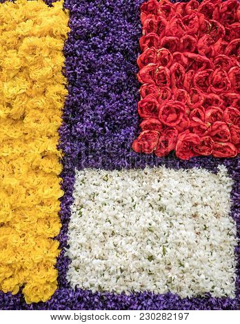 Abstract Background . Close-up Of Colorful Tulips And Hyacinths