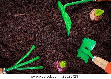 View From Above On Gardening Tools Lays On Soil With Copy Space.
