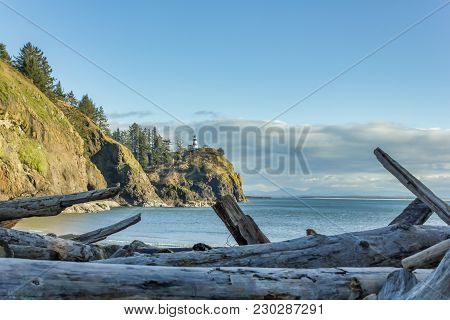 Driftwood In Front Of Ocean And Cliffs In The Pacific Northwest