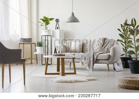 Sofa With Blanket And Pillow
