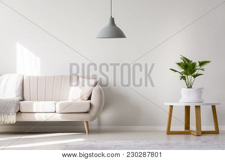 Gray Lamp In Living Room
