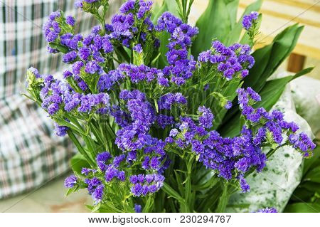 Bouquet Of Fresh Blue Small Florets In Shop