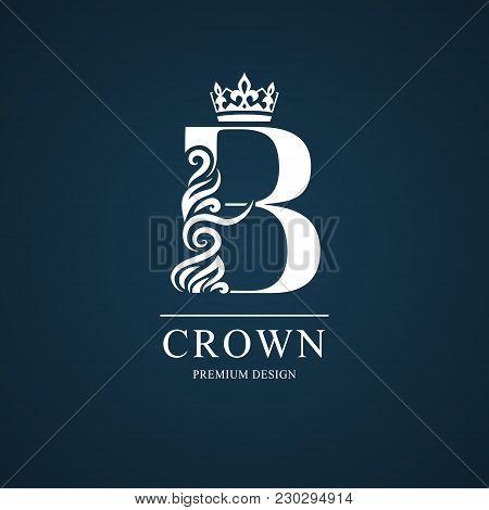 Elegant Letter B. Graceful Style. Calligraphic Beautiful Logo. Vintage Drawn Emblem For Book Design,