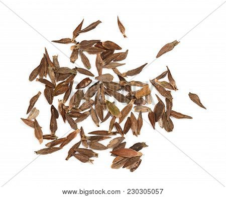 Spear-shaped, Flat Zinnia Flower Seeds Scattered On A White Background