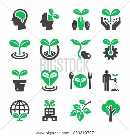 Plant And Ecology Icon Set Vector Illustration