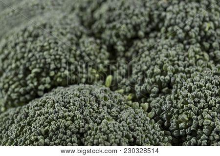 Close Up Of A Fresh Organic Broccoli Florets. Selective Focus