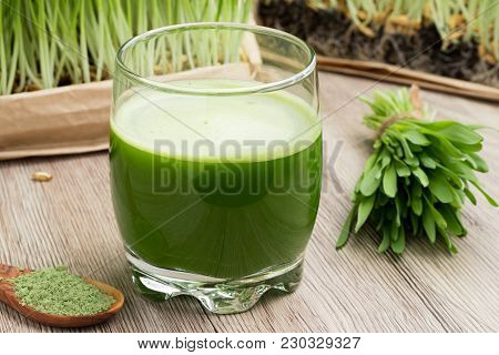A Glass Of Barley Grass Juice With Green Barley Powder And Young Homegrown Barley Grass In The Backg