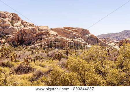 Landscape Scenic Rocks 8779
