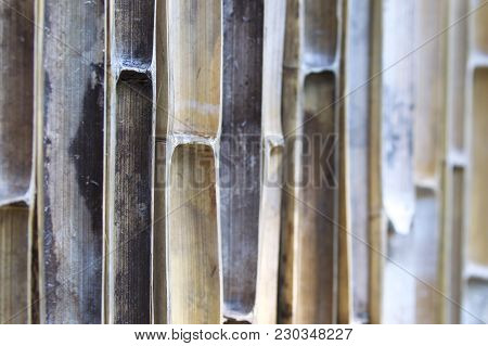 Fence From Bamboo Trunks For Perimeter Fencing